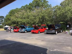 Group View of Cars
